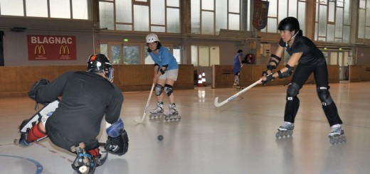 BSC Roller. Semaine Rink. Loisirs adultes  mai 2014.