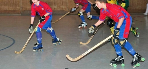 BSC-Rink-junior-02-février-2014