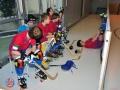BSC Rink junior 02 février 2014.
